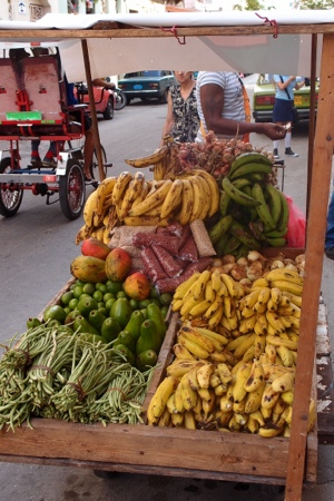 Fruit barrow