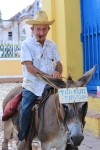 Man on donkey